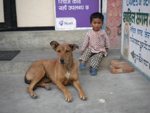 Un petit gamin des rues, à Katmandou...